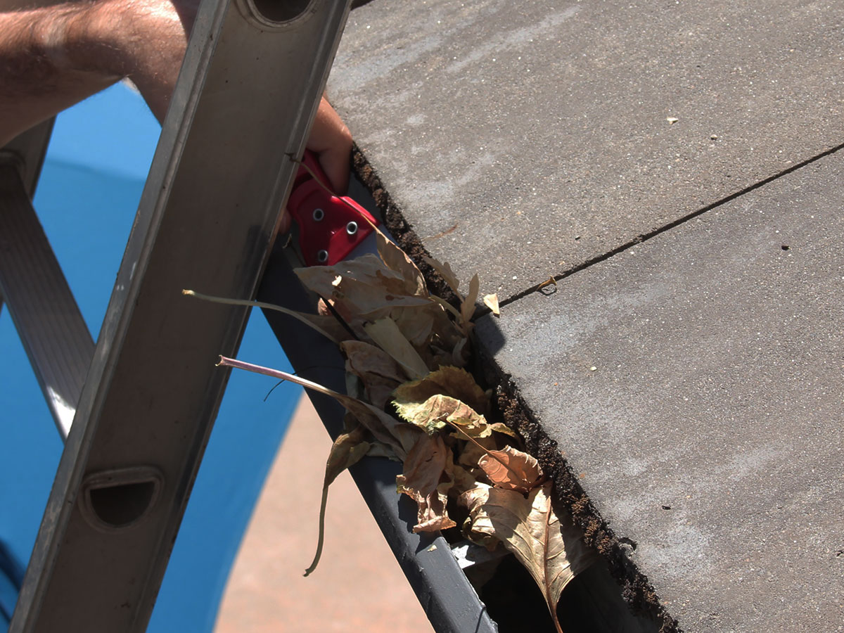 Remove Debris From Gutters And Downspouts Homezada