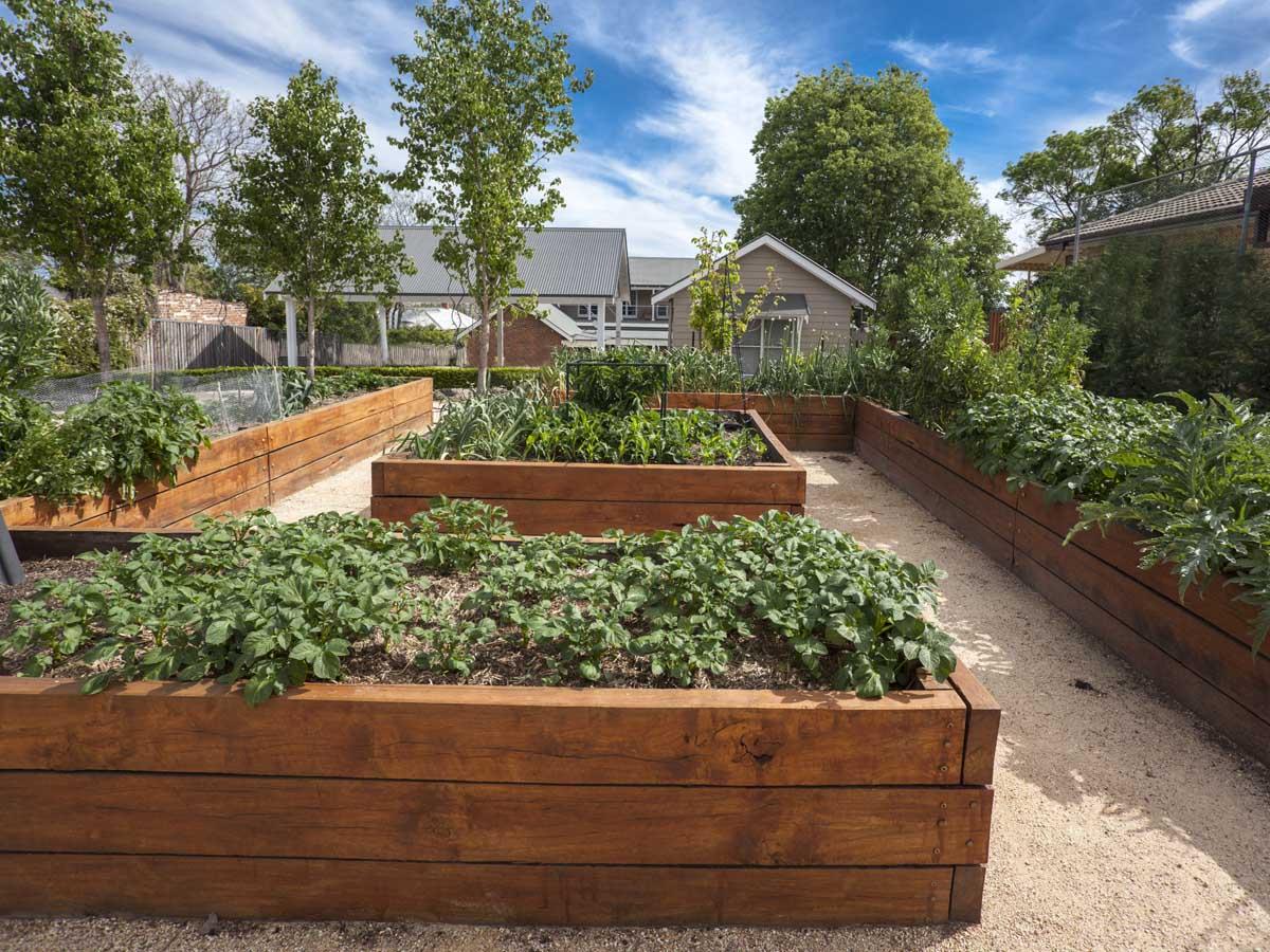 vegetable garden templates