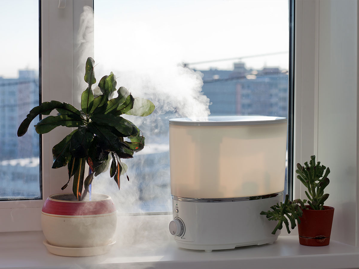 Clean and store humidifiers