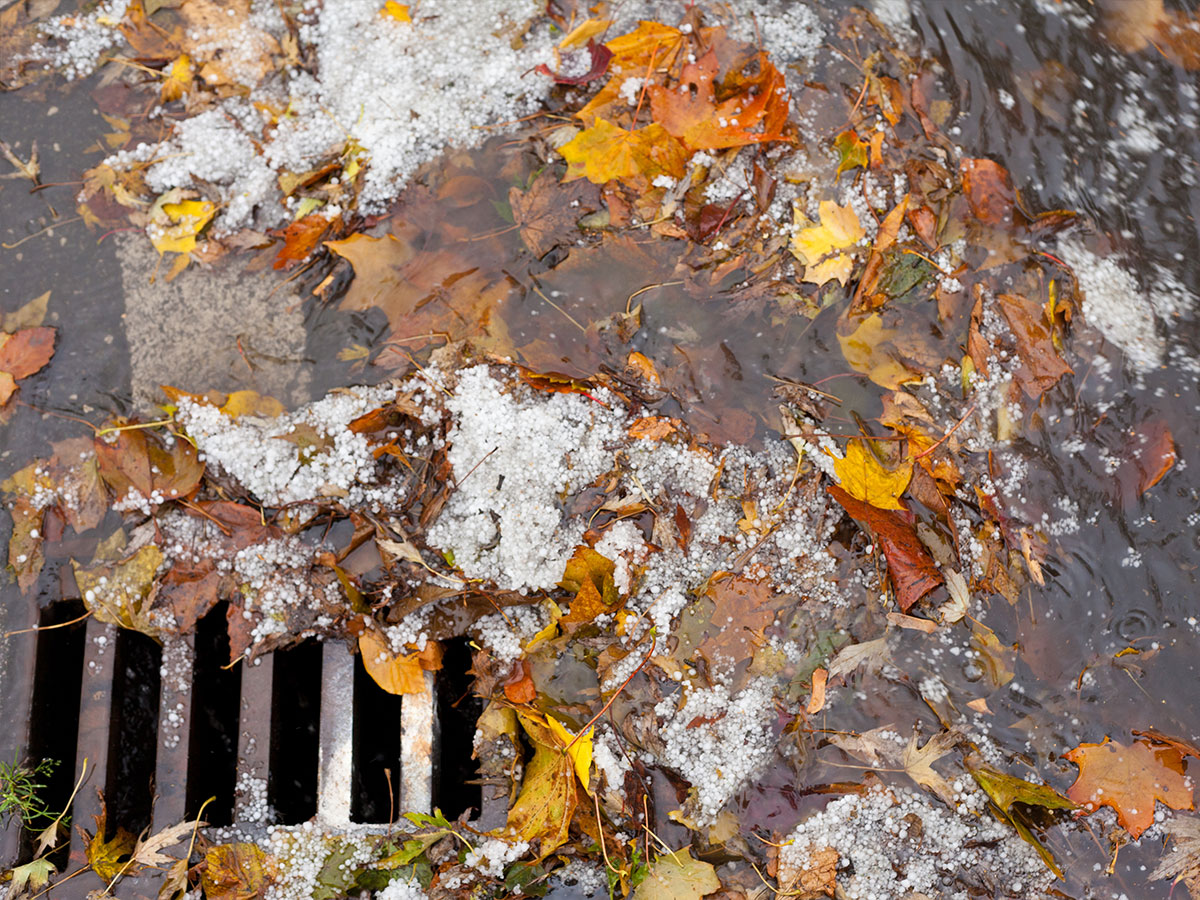 Make sure exterior drains are not clogged