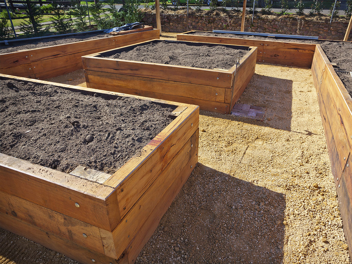 Prepare garden beds for planting