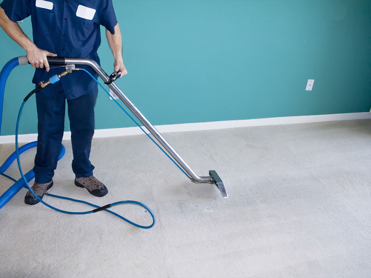 Steam clean carpets