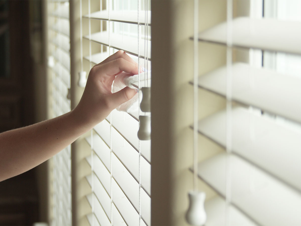 Wipe and dust all blinds and shutters
