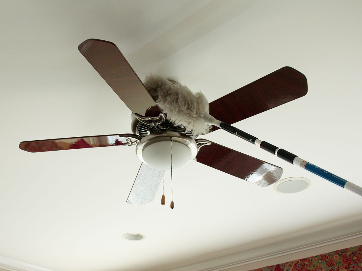 Wipe and dust ceiling fans and portable fans